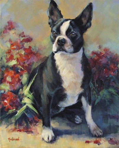 Dogs – Small – Molly
