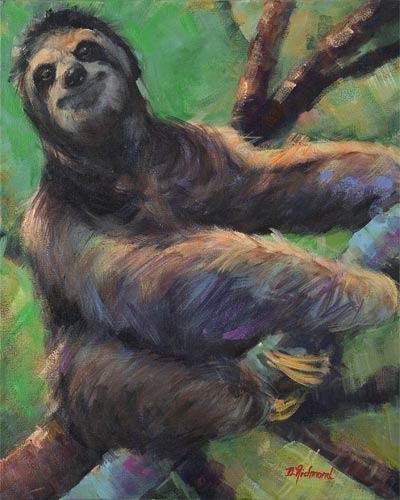 Allie's Sloth