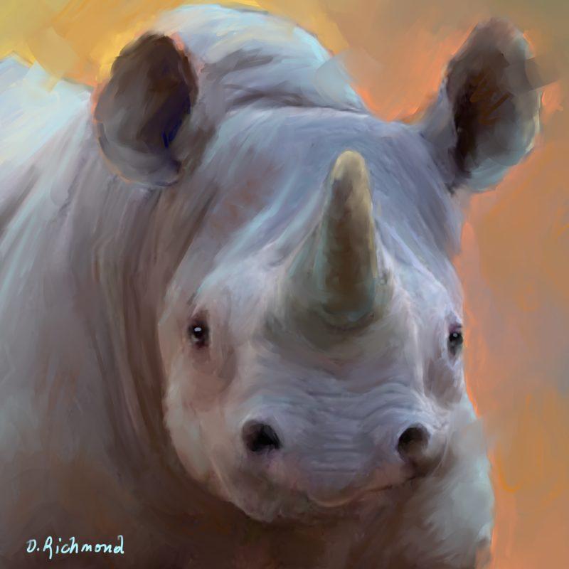 Rhino Refuge