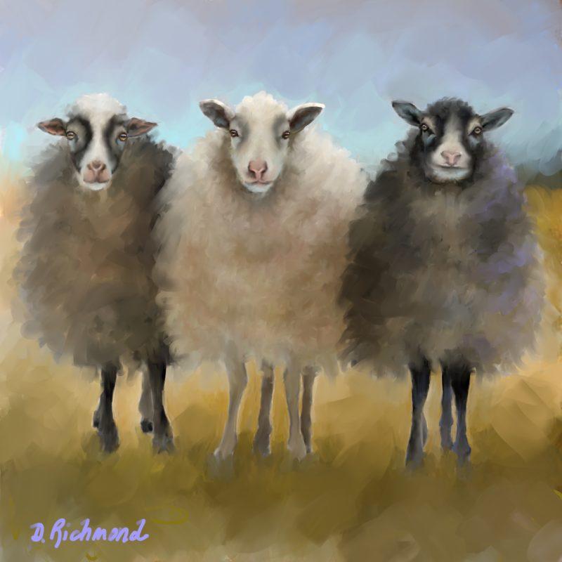 Wooly Friends